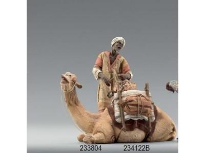 Immanuel Dromedar liegend für Beduinen color