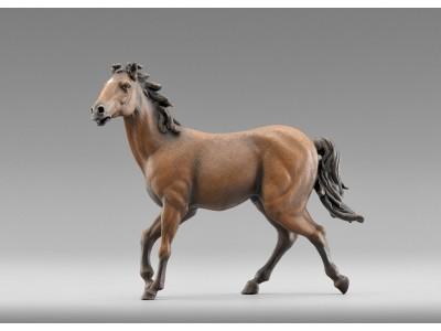 Immanuel Pferd, braun