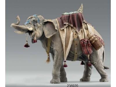 Elefant bepackt