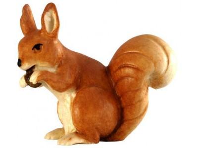 Eichhörnchen lasiert