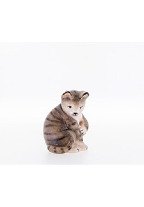 Katze color